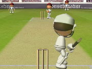 Click to Play Flash Cricket 2