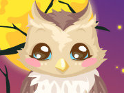 Click to Play Owl Care