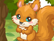 Click to Play Squirrel Care